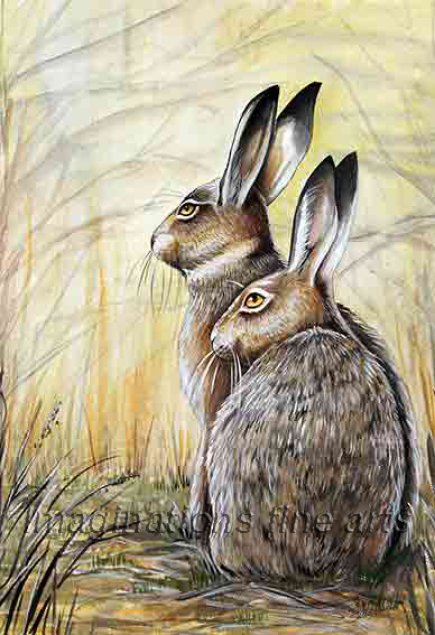 Shelley Anne Eynon two hares in long grass print